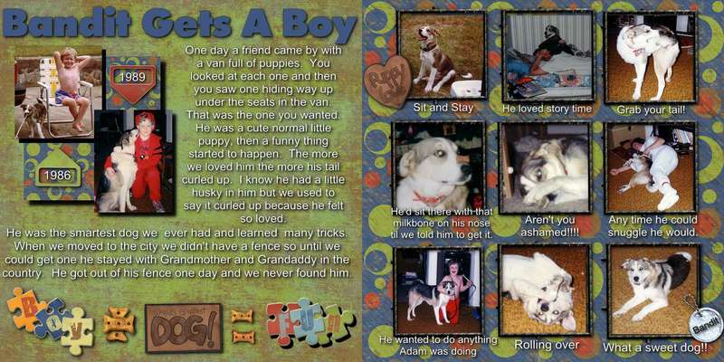 Bandit Gets A Boy