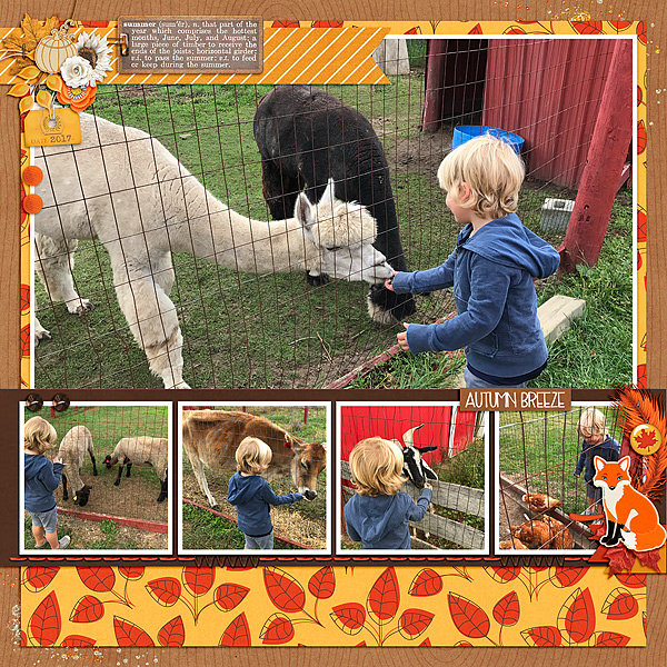Animals at the Orchard