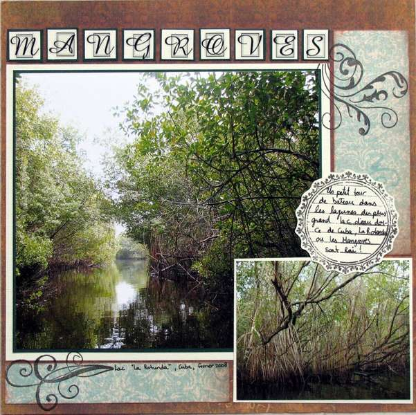 Cuba - Mangroves