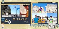 Mitzvah Trip