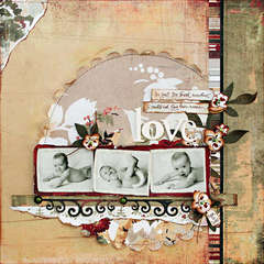 *Love* - Scrapbook.com Wassail Kit!!