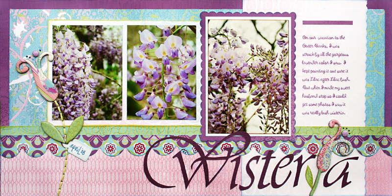 *Wisteria* BG Newsletter June '08