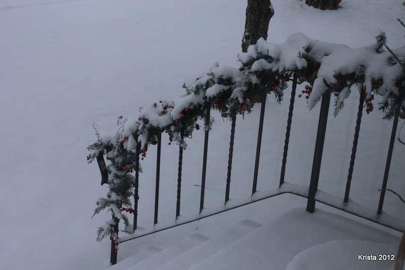POD #11 - Snow!!!