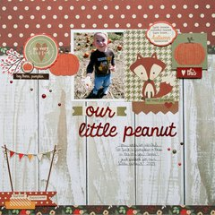 Our Little Peanut **Simple Stories DT**