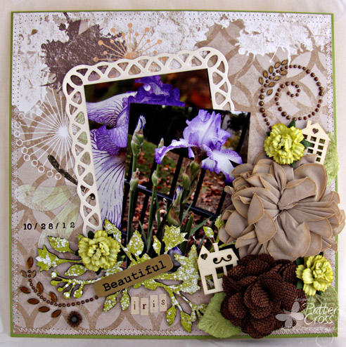 Beautiful Iris {Blue Fern Studios}