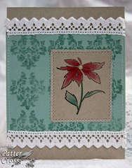 Pretty Poinsettia {New Memory Box}