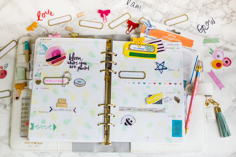 Planner with inked background