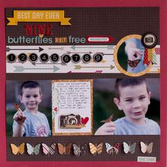 Nine Butterflies **Simple Stories**
