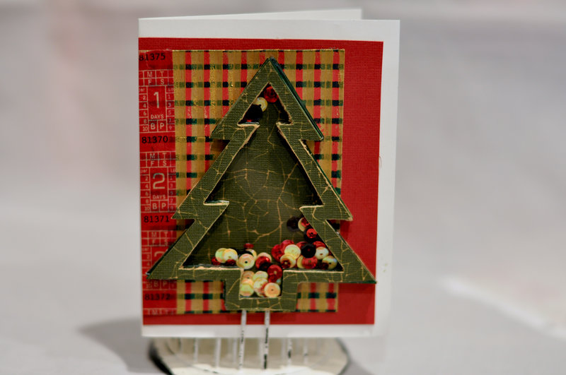 Holiday Shaker Card