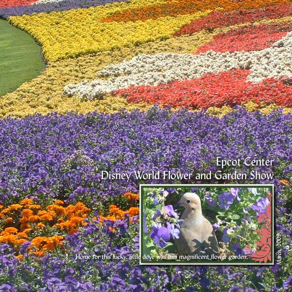 Epcot Center, Disney World Flower and Garden Show