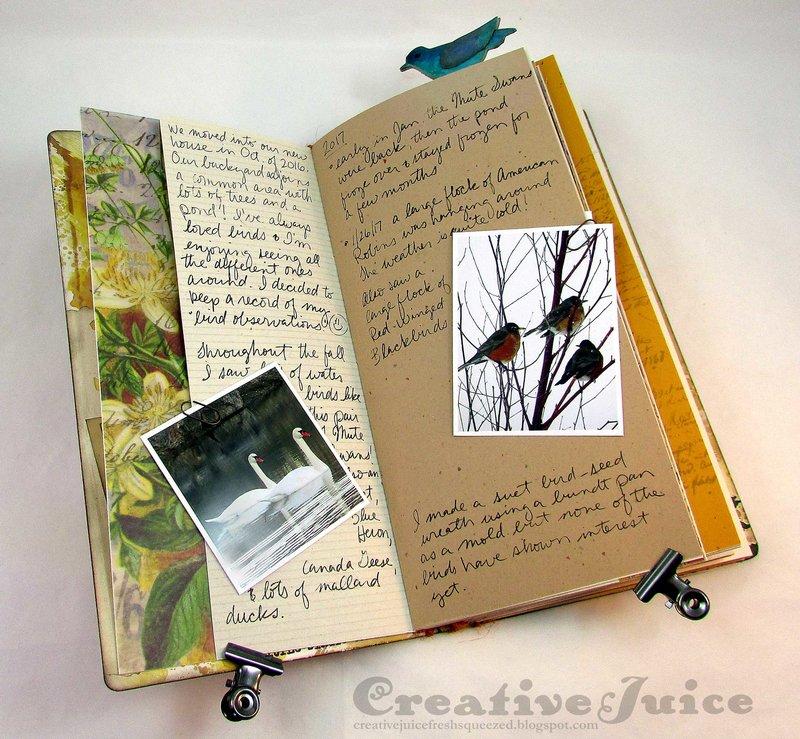 Sizzix Journal Die - bird watching journal