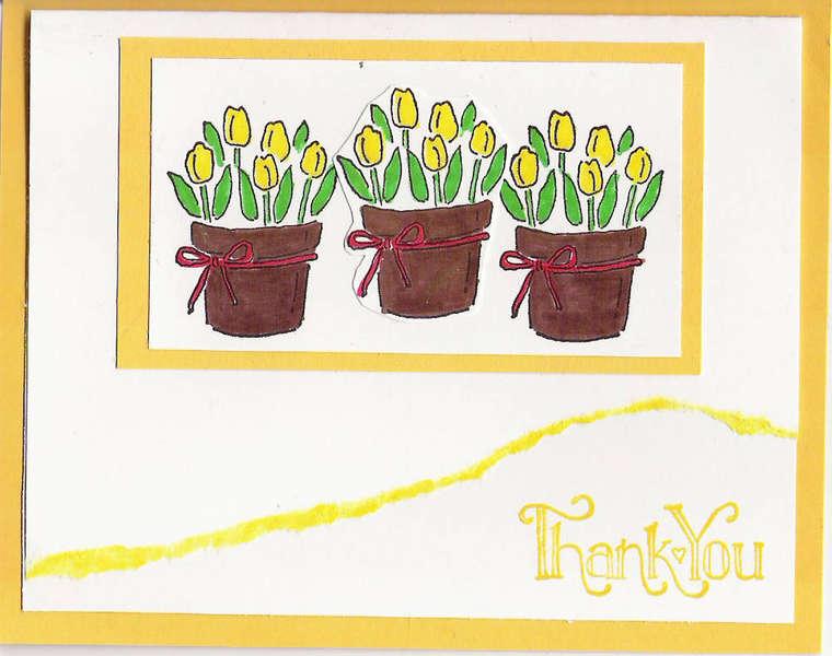 Tulip Thank You (yellow)
