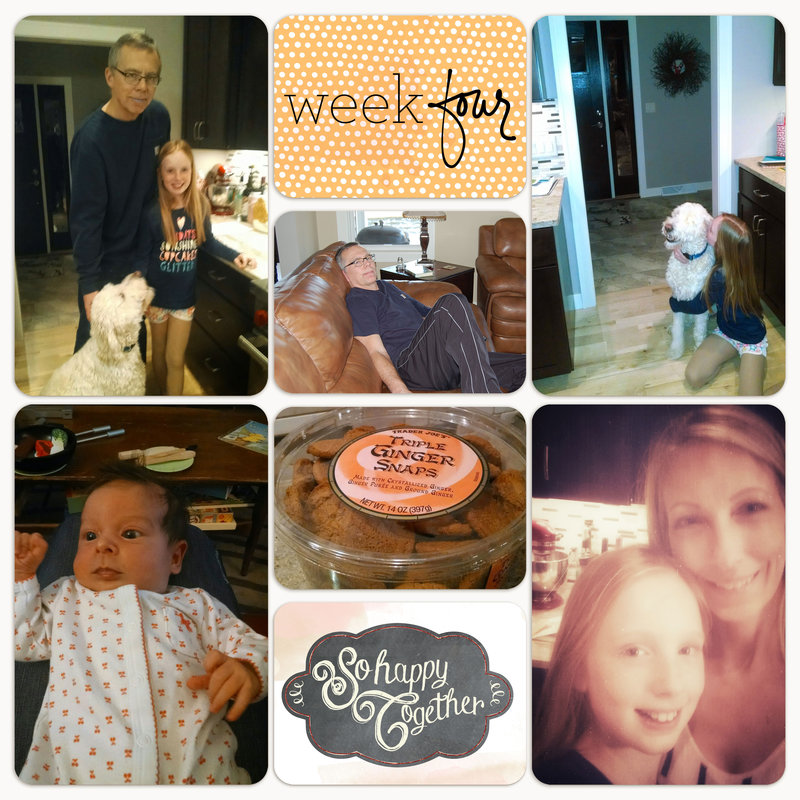 Project Life 2015 | Week 4