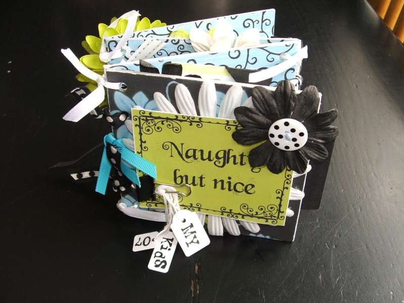 Naughty But Nice (Accordion Ribbon Album)