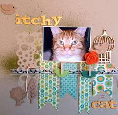 Itchy the Cat