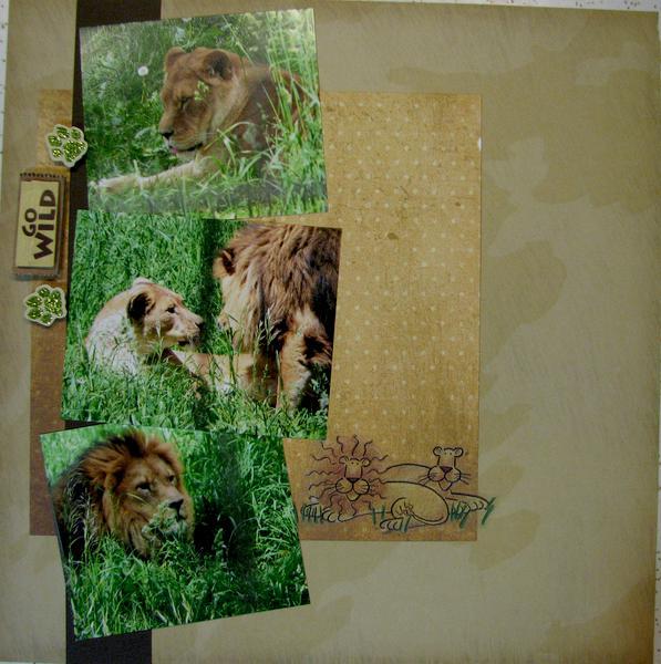 Go Wild - Lions