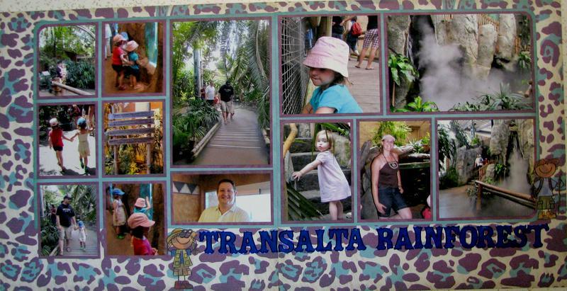 Transalta Rainforest