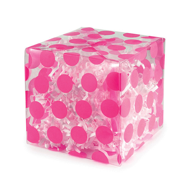 Super Cute Box Made with the New Clearly Bold Acetate from We R Memory Keepers and the Gift Box Punch Board
