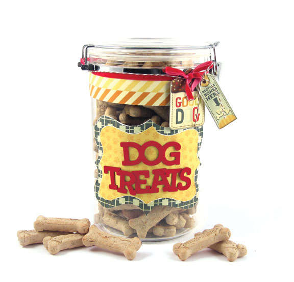 Pet Treats Container