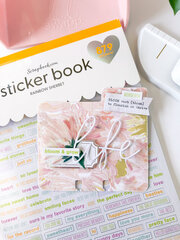 Blush MemoryDex Spinner + Dex Card