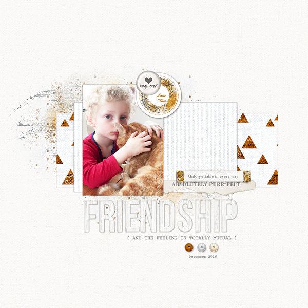 Purr-fect Friendship