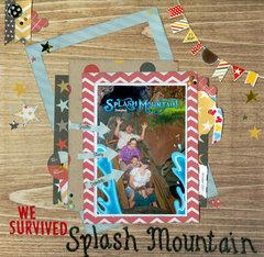 We survived Splash Mountain