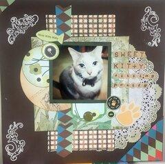 Sweet Kitty Sitting Pretty (V-7/52)