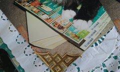 Paper Hoarder Cat