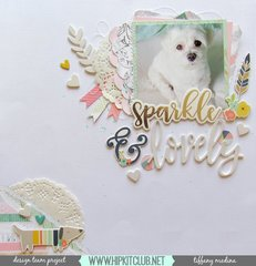 sparkle & lovely