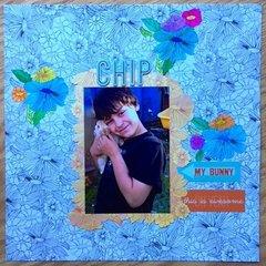 Chip - My Bunny