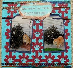 Copper in the Coppertina