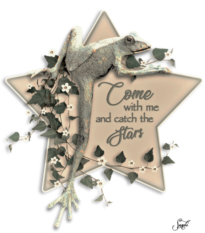 Star Climber