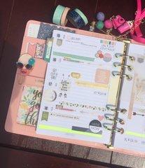 Carpe Diem 2016 planner