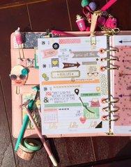 Carpe Diem 2016 SimpleStories/TheResetGirl Planner