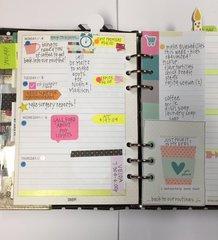 January Week 2 - Carpe Diem Planner