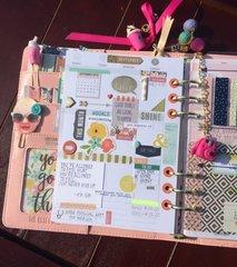 Carpe Diem Planner 2016...Simple Stories/The Reset Girl