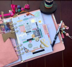 Carpe Diem 2016 Planner...Simple Stories/The Reset Girl