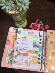 Carpe Diem 2016 Planner - Simple Stories/The Reset Girl