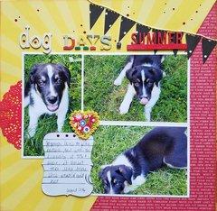 Dog Days of Summet