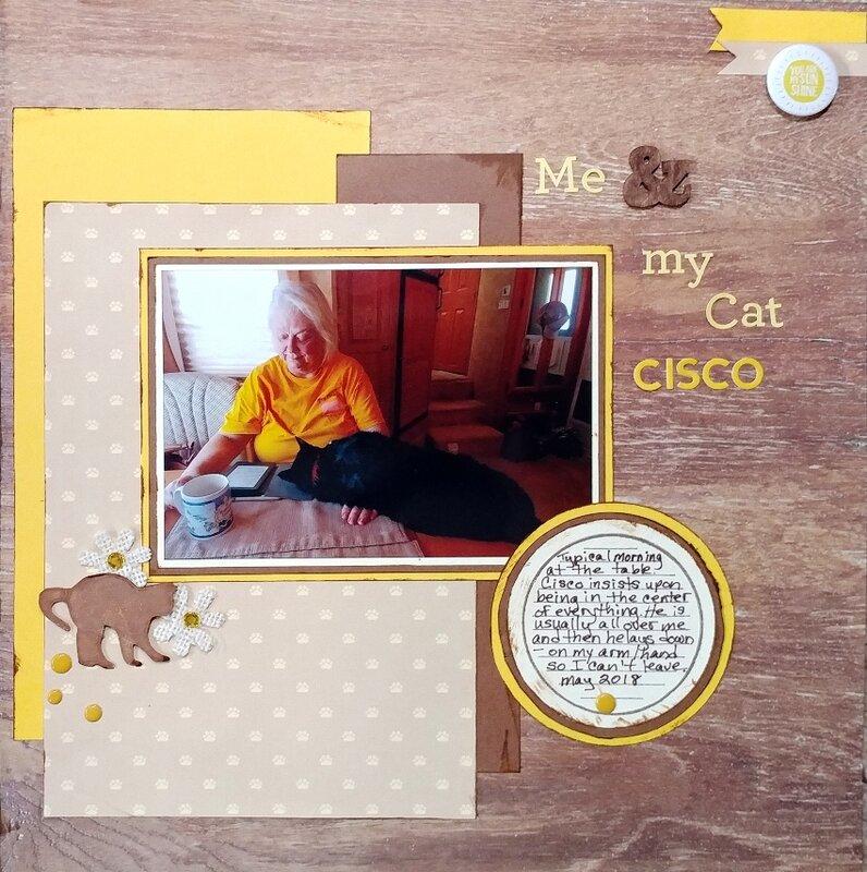 Me & My Cat Cisco