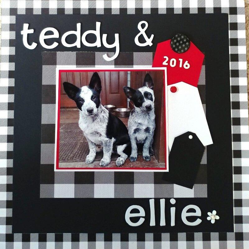 Teddy & Ellie