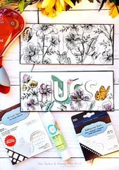 Eclipse Cards for Scrapbook Adhesives by 3L