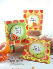 Melon Love Card/Envelope gift with with TPD Stamps & WRMK 123 Punch