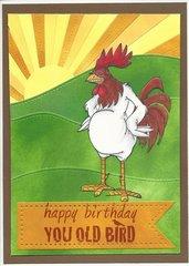 Happy Birthday Old Bird!