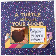 A Turtle as Big as Your Hand