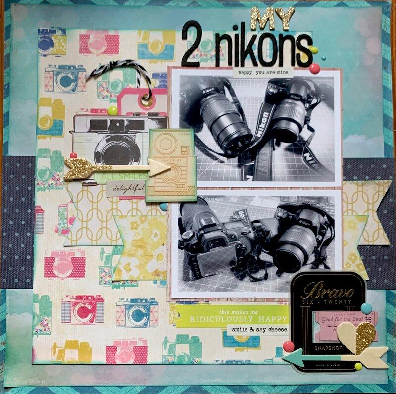 MY 2 Nikons