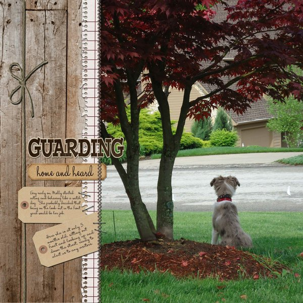 ~ Guarding Home and Heard ~