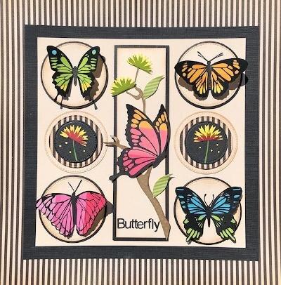 August Sampler Class - The Butterfly