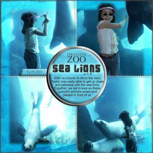 Digital Sea Lions
