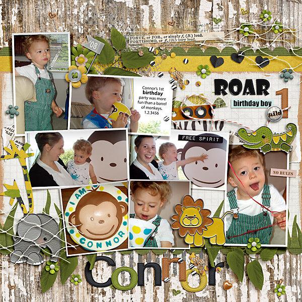 2009 Connor Birthday